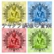 リラックスした音楽のアカデミー チャクラ瞑想の音楽 ‐ マインドフルネストレーニングに音楽を癒し、Zen Meditation,サウンドセラピー, 7 Chakras