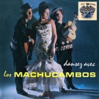 Los Machucambos Samba Da Minha Terra