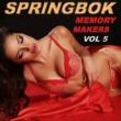 Springbok Springbok Memory Makers - Vol 5