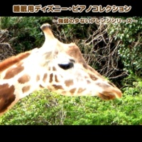 浜崎 vs 浜崎 くまのプーさん (ピアノバージョン)