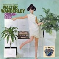 Walter Wanderley Mar, Amar