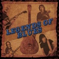 Johnny Powers Fly Farm Blues