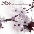 Meditation Masters Bliss ‐ Soft Background Music for Reiki, Zen Meditation and Devotion