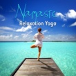 Deep Massage Tribe, Meditation Music Zone, Healing Yoga Meditation Music Consort Namaste Relaxation Yoga ‐ Peaceful Music for Yoga Classes and Relaxation, Relax Your Mind, Guided Mindfulness Meditation
