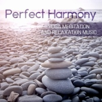 Yoga Meditation Music Set Mind and Body Harmony