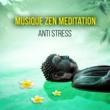 Rebirth Yoga Music Academy Musique Zen Meditation Anti Stress ‐ Détente, relaxation, yoga, spa, sérénité, massage et relax, berceuse pour endormir, sons de la nature