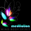 Body and Soul Music Zone Meditation - Mind Body Spirit ‐ Soul, Concentration, Massage Body Therapy, Reiki Healing, Positive Thinking, Inner Peace, Relieve Stress