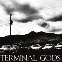 Terminal Gods Road of the Law