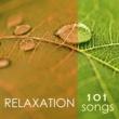 Spa Music Relaxation Meditation Relaxation 101 - Tibetan Chakra Meditation Music 4 Massage, Reiki & Deep Sleep Songs, Relaxing Nature Sounds