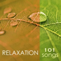 Spa Music Relaxation Meditation Sleep Therapy