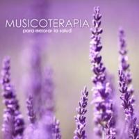 Musicoterapia Meditar y Aprender