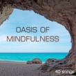 Oasis of Meditation Oasis of Mindfulness - Meditation Music for Yoga and Quietness, 40 Deep Relaxation Songs for Your Spirituality