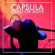 Capsula Dark Age