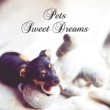 Pet Music Academy & Calm Pets Music Academy Pets Sweet Dreams ‐ Calming Music for Dogs and Cats, Relaxation Therapy, Soothing Sounds, Pets Lullaby