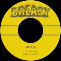Hal Paige Thunderbird