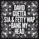 David Guetta Bang My Head (feat. Sia & Fetty Wap)