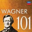 """Tom Krause Wagner: Tristan und Isolde / Act 3 - """"Kurwenal! Hör!"""""""