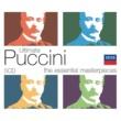 レナータ・テバルディ/サンタ・チェチーリア国立アカデミー管弦楽団/アルベルト・エレーデ Turandot / Act 1: 歌劇「トゥーランドット」- お聞き下さい、王子様