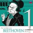 アルテュール・グリュミオー/ニュー・フィルハーモニア管弦楽団/アルチェオ・ガリエラ ヴァイオリン協奏曲 ニ長調 作品61: 第3楽章: Rondo. Allegro