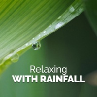 Calming Rain Sounds Hail Storm