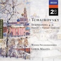 Wiener Philharmoniker/Lorin Maazel Tchaikovsky: Symphony No.5 In E Minor, Op.64, TH.29 - 1. Andante - Allegro con anima