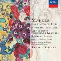 ブリギッテ・ファスベンダー/ベルリン・ドイツ交響楽団/リッカルド・シャイー Rückert-Lieder: 《リュッケルトの詩による5つの歌曲》~第5曲:あなたが美しさを求めて愛するの