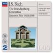 Carl Pini/Academy of St. Martin in the Fields/Sir Neville Marriner J.S. Bach: Brandenburg Concerto No.1 in F, BWV 1046 - 1. (Allegro)