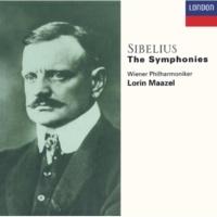 Wiener Philharmoniker Sibelius: Symphony No.1 in E minor, Op.39 - 2. Andante (ma non troppo lento)