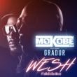 Mokobé Wesh (#TuMeDisDesWesh) [feat. Gradur]