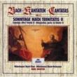 """ペーター・シュライアー/ミュンヘン・バッハ管弦楽団/カール・リヒター J.S. Bach: Cantata, BWV 96 """"Herr Christ, der einge Gottessohn"""" - 3. Arie: Ach ziehe die Seele mit Seilen der Liebe"""