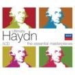 Philharmonia Hungarica 交響曲 第94番 ト長調 Hob.I: 94《驚愕》: 第1楽章: Adagio - Vivace assai