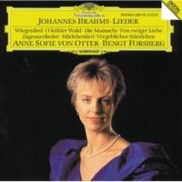アンネ・ソフィー・フォン・オッター,ベンクト・フォシュベリ ジプシーの歌 作品103: 第2曲: 湧き上がるリマの流れ