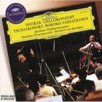 ムスティスラフ・ロストロポーヴィチ/ベルリン・フィルハーモニー管弦楽団/ヘルベルト・フォン・カラヤン ロココの主題による変奏曲  作品33: 第6変奏: Andante