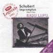 ラドゥ・ルプー 4つの即興曲 D. 899(作品90): 第2番  変ホ長調