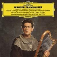 """アンドレアス・シュミット/フィルハーモニア管弦楽団/ジュゼッペ・シノーポリ Wagner: Tannhäuser - Paris Version / Act 3 - """"O du, mein holder Abendstern"""""""