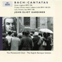 イングリッシュ・バロック・ソロイスツ/ジョン・エリオット・ガーディナー カンタータ 第106番《神の時こそいと良き時》BWV.106: 1.ソナティーナ