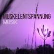 Beruhigende Musik Akademie