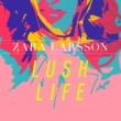Zara Larsson ラッシュ・ライフ