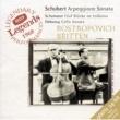 ムスティスラフ・ロストロポーヴィチ/ベンジャミン・ブリテン アルペジオーネ・ソナタ イ短調 D.821: 第1楽章: Allegro moderato