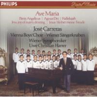 José Carreras/Wiener Sängerknaben/Chorus Viennensis/Wiener Symphoniker/Uwe Christian Harrer/Michael G. Gormley Bizet: Agnus Dei