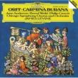 シカゴ交響楽団/ジェイムズ・レヴァイン カルミナ・ブラーナ: 6.おどり