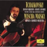 ミッシャ・マイスキー/オルフェウス室内管弦楽団 ロココの主題による変奏曲 作品33: 第3変奏: Andante sostenuto