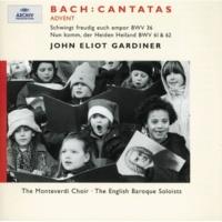 """アンソニー・ロルフ・ジョンソン/アンソニー・ロブソン/イングリッシュ・バロック・ソロイスツ/ジョン・エリオット・ガーディナー J.S. Bach: """"Schwingt freudig euch empor"""" BWV 36 / Part 1 - 3. Aria """"Die Liebe zieht mit sanften Schritten"""" (Tenor)"""