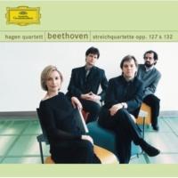 ハーゲン弦楽四重奏団 Beethoven: String Quartet No.15 in A minor, Op.132 - 1. Assai sostenuto - Allegro