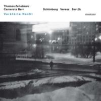 トーマス・ツェートマイアー/カメラータ・ベルン 弦楽オーケストラのためのディヴェルティメント: 2. Molto adagio