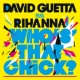 David Guetta Who's That Chick ? (feat. Rihanna) [Night Version]