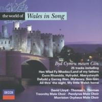 T. Haydn Thomas/エニド・シモン Traditional: Dafydd y Garreg Wen