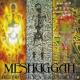 MESHUGGAH DESTROY ERASE IMPROVE
