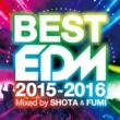 Avicii BEST EDM -2015-2016- mixed by SHOTA & FUMI