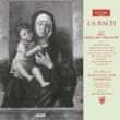 ケンブリッジ・キングス・カレッジ合唱団/サイモン・プレストン/サー・デイヴィッド・ウィルコックス J.S. Bach: Musicalisches Gesangbuch von G. C. Schemelli - O Jesu So Meek, BWV 493